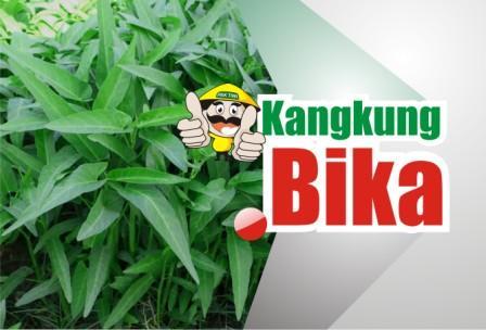 Kangkung Bika