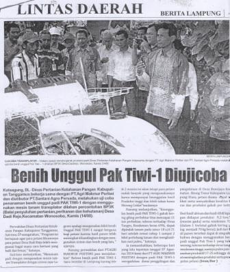 Benih Unggul Pak Tiwi-1 Diujicoba