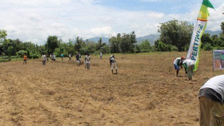 Bahan Organik untuk Kesuburan Tanah