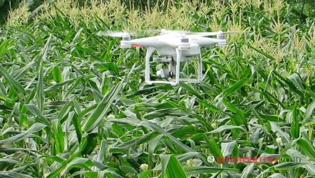Penggunaan Drone untuk Pertanian