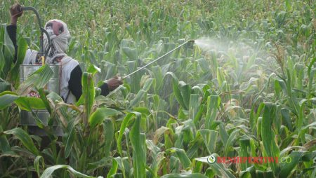 Prinsip Mencampur Bahan Aktif Pestisida