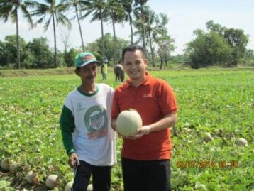 Melon Ivory, Si Manis yang Menjadi Primadona