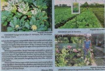 Wali Kota Binjai Kembangkan Model Pertanian Perkotaan