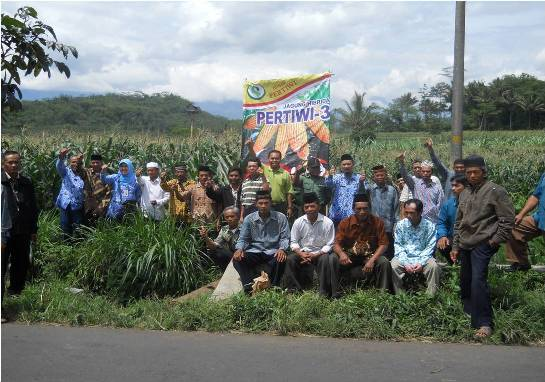 FFD Jagung Pertiwi-3 di Kedu, Temanggung